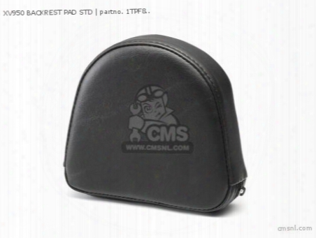 Xv950 Backrest Pad Std