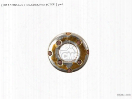 (18293mn5650) Packing,protector