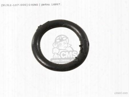 (91312107000) O Ring