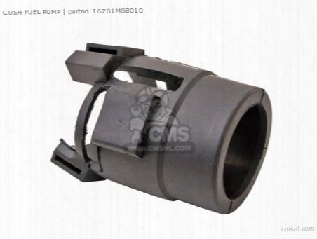 Cush Fuel Pump