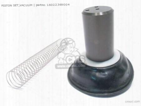 Piston Set,vacuum