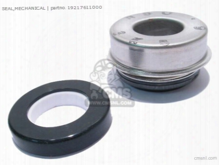 Seal,mechanical