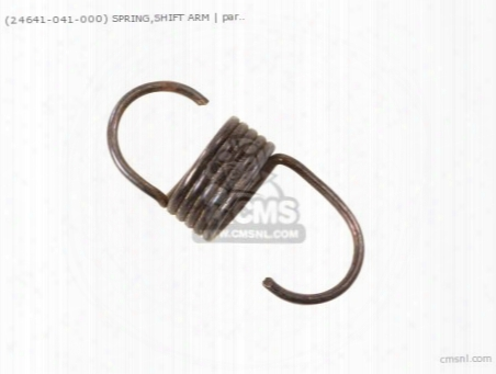 (24641041000) Spring Shift Arm