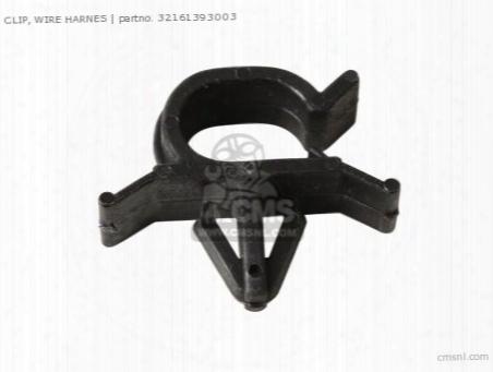 Clip, Wire Harnes