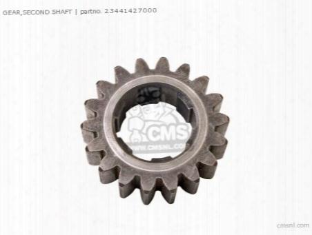 Gear,second Shaft