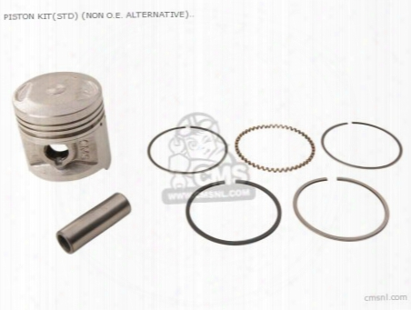 Piston Kit(std) (non O.e. Alternative)