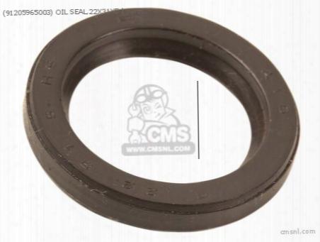 (91205965003) Oil Seal,22x31x5