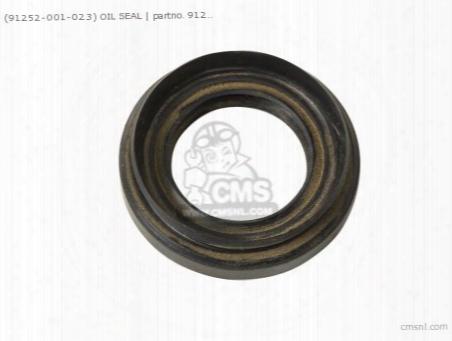 (91252001023) Oil Seal 21357