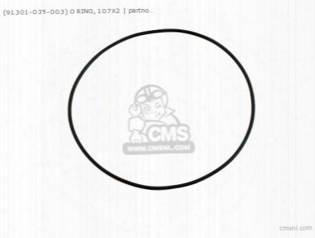 (91301035003) O Ring 107x2