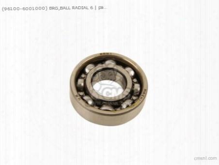 (961006001000) Brg,ball Radial 6