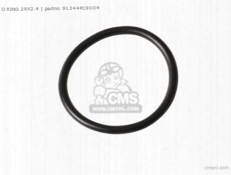 O Ring 29x2.4