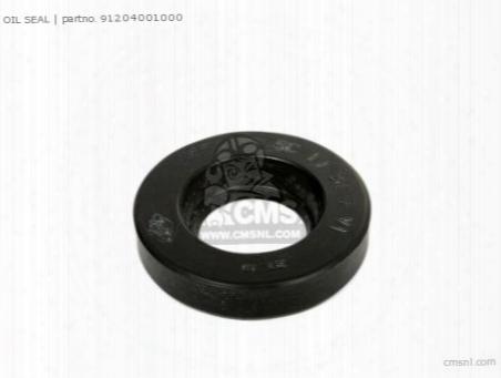 Oil Seal 117347