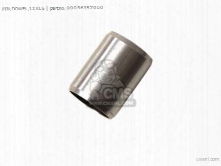 Pin,dowel,12x16