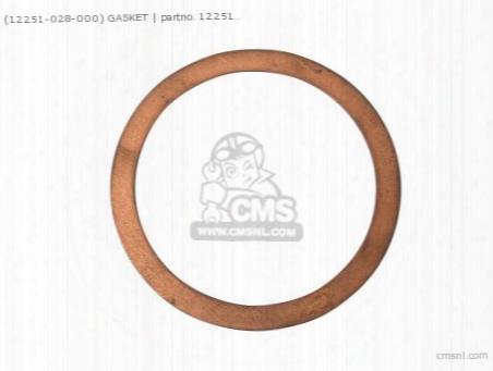 (12251028000) Gasket Head
