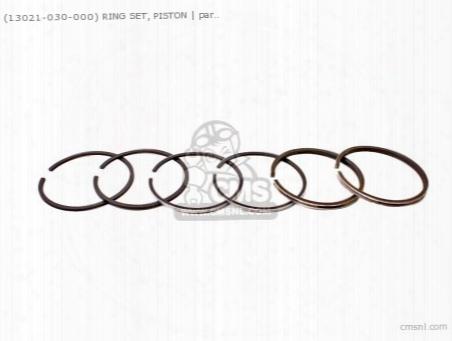 (13021030000) Ring Piston 0.25