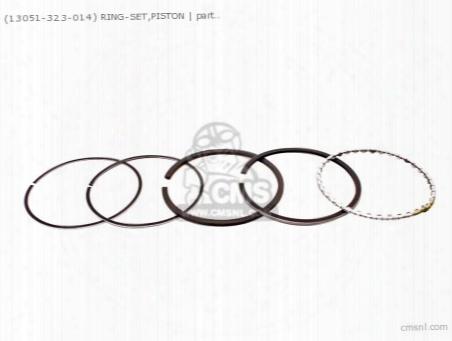 (13051323014) Ring-set,piston