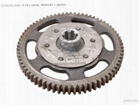 (23110001030) Gear, Primary