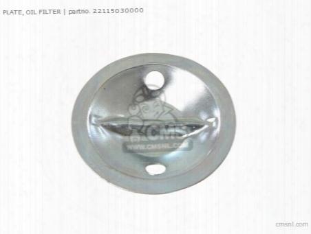 Plate Oil Filter