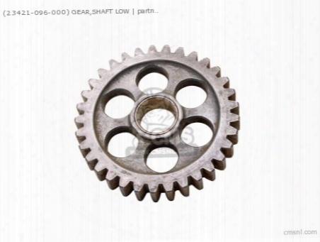 (23421096000) Gear Low C 33t