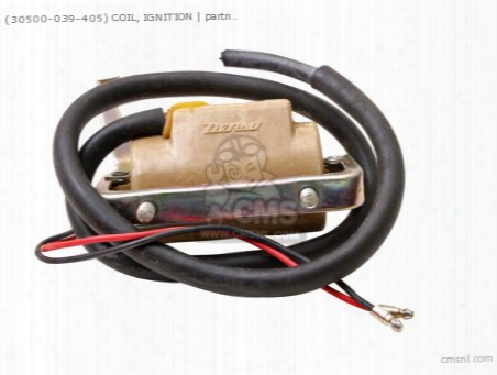 (30500039004) Coil Assy Ign