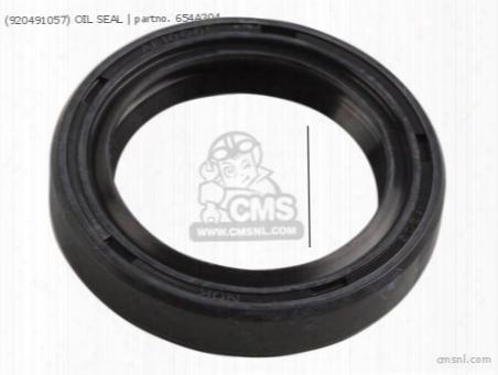 (920491057) Oil Seal