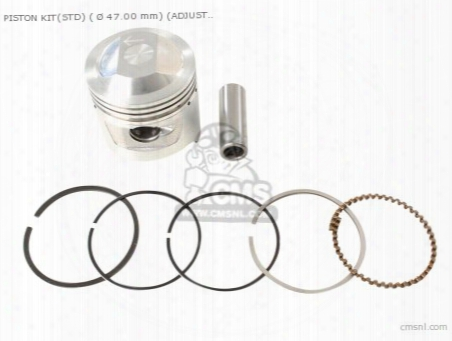 Piston Kit(std) (ãƒâ˜47.00) (adjusted For Ã☠39.00 Mm C.head)