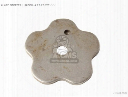 Plate, Drum Stopper Cam