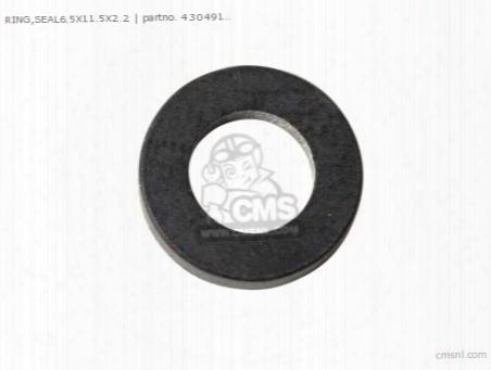 Ring Seal6.5x11.5x2.2
