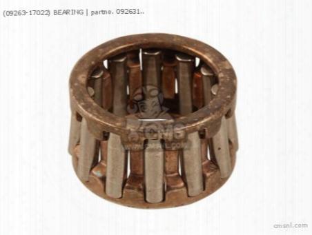 (09263-17022) Bearing
