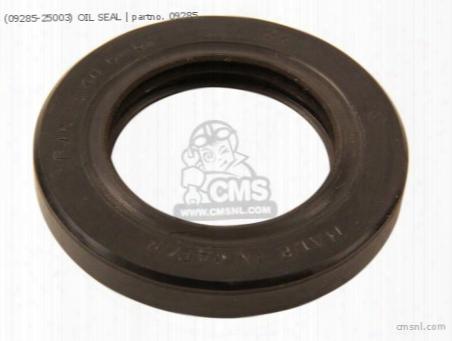 (0928525003) Oil Seal