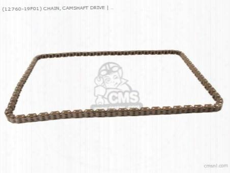 (1276019f01) Chain Comp,camshaft Drive