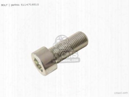 Bolt,fork Cylinder(10x25)