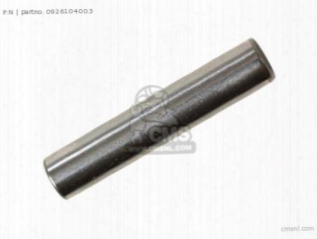 Pin(4x20)