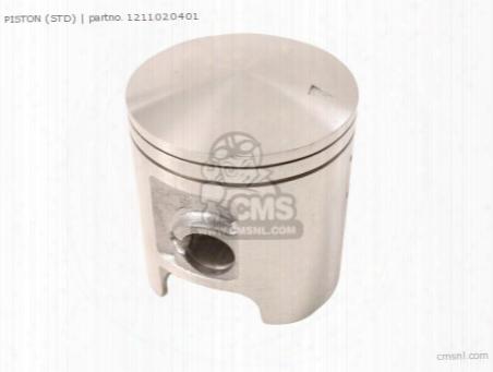 Piston (49.00mm)