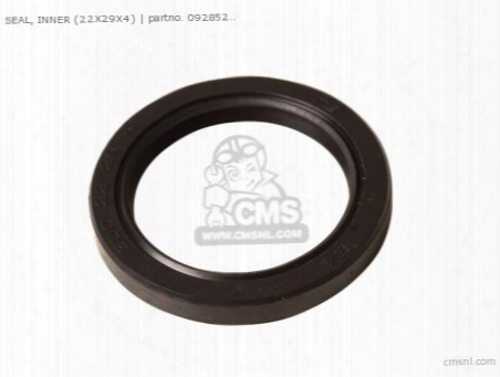 Seal,oil(22x29x4)