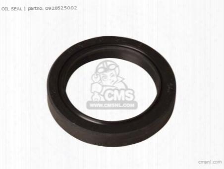 Seal,oil(25x34x6)