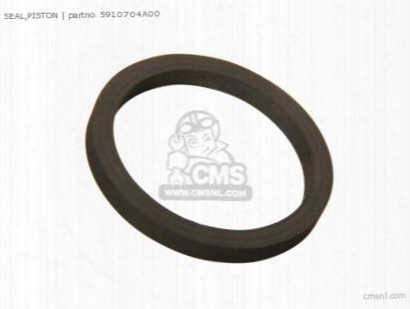 (5910740f00) Seal,piston