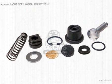 (5960049811) Piston & Cup Set