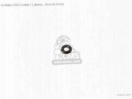 O-ring (493-carb.)