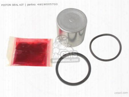 Piston Seal Kit