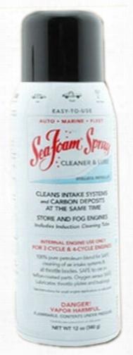 Sea Foam Engine Intake Cleaner Spray 12 Oz.