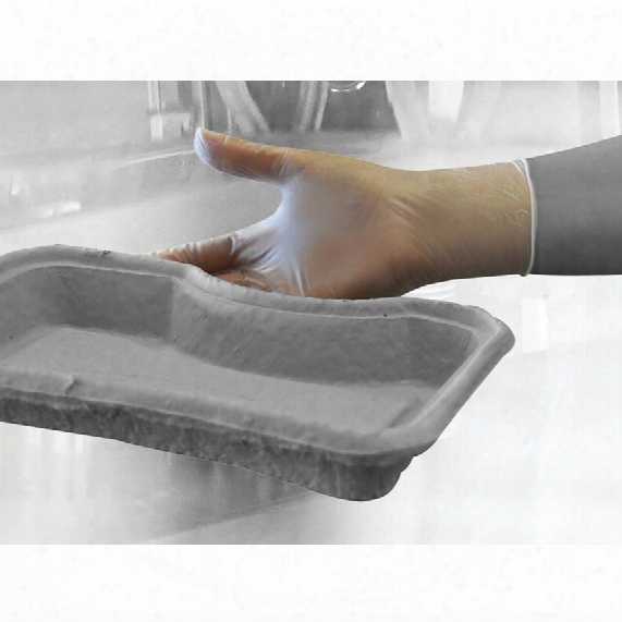 Polyco Gl6222 Bodyguards Pf Clear Vinyl Disposable Gloves - Size M