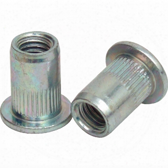 Qualfast M6 Steel Large Head Knurled Rivet Nut (box-250)