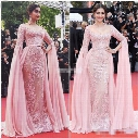 Sonam Kapoor Cannes 2017 Celebrity Evening Dresses with Long Sleeve Scoop Neck Beading Lace Blush Detachable Train Red Carpet Gowns for Prom