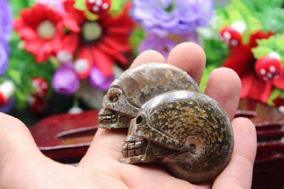 2pcs Natural Quartz Crystal Snail Fossil Skull Healing Carving